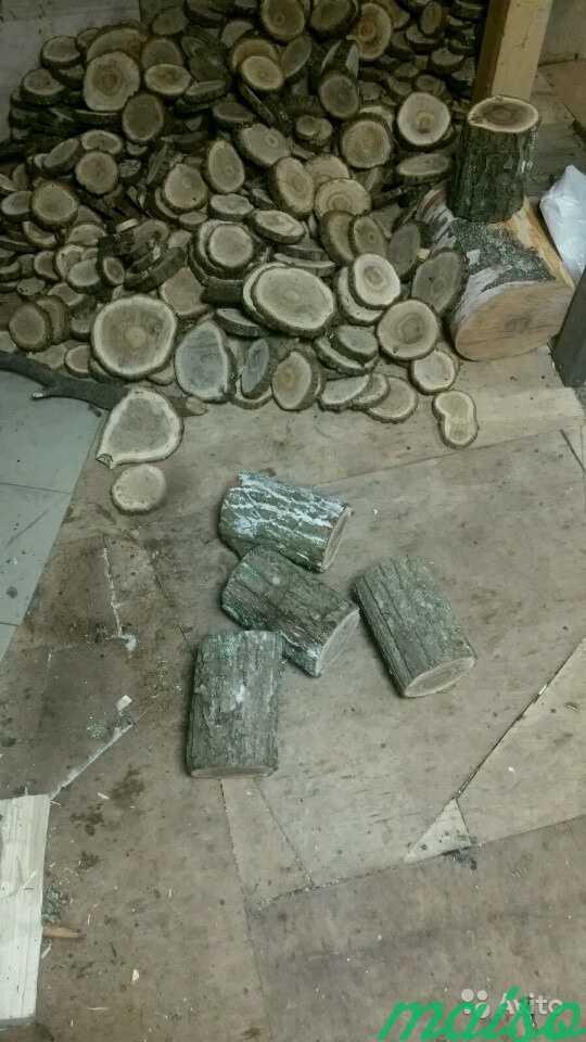 Дерево в стиле лофт в Москве. Фото 4