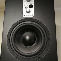 Сабвуфер активный EVE Audio TS107