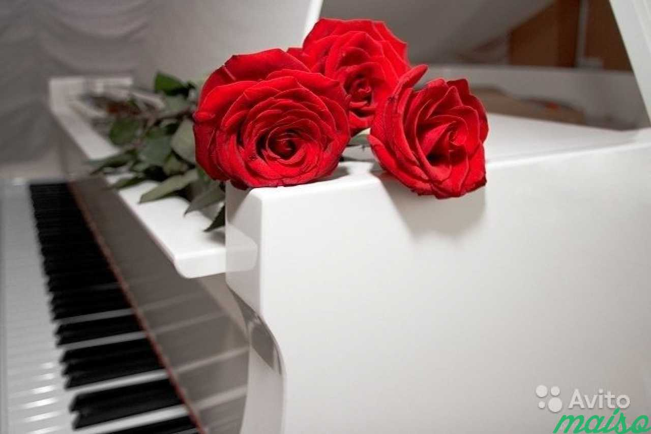 Открытки с клавишами пианино с днем рождения