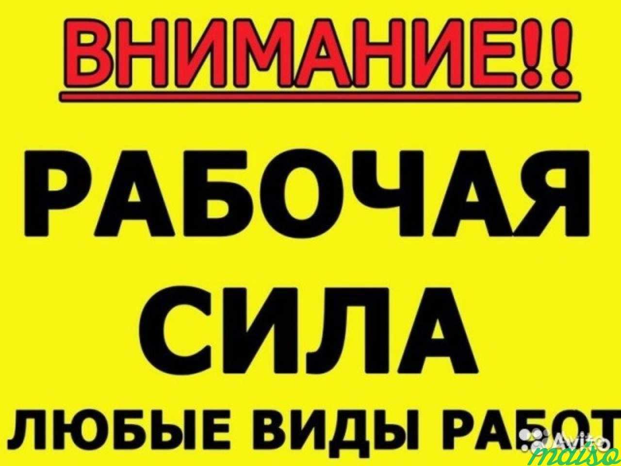 Разнорабочие, подсобники в Санкт-Петербурге. Фото 1