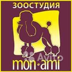 Стрижка и тримминг собак в салоне. юао Москва