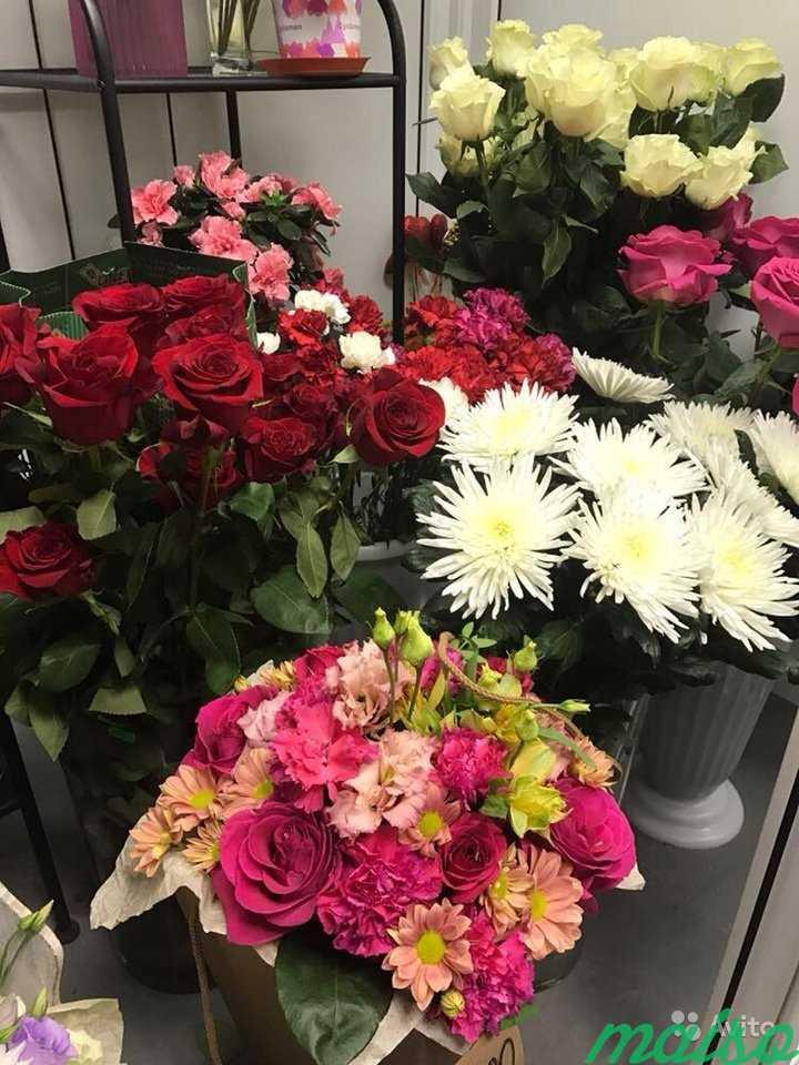 Купить крыму, купить магазин цветов в москве 24 часа