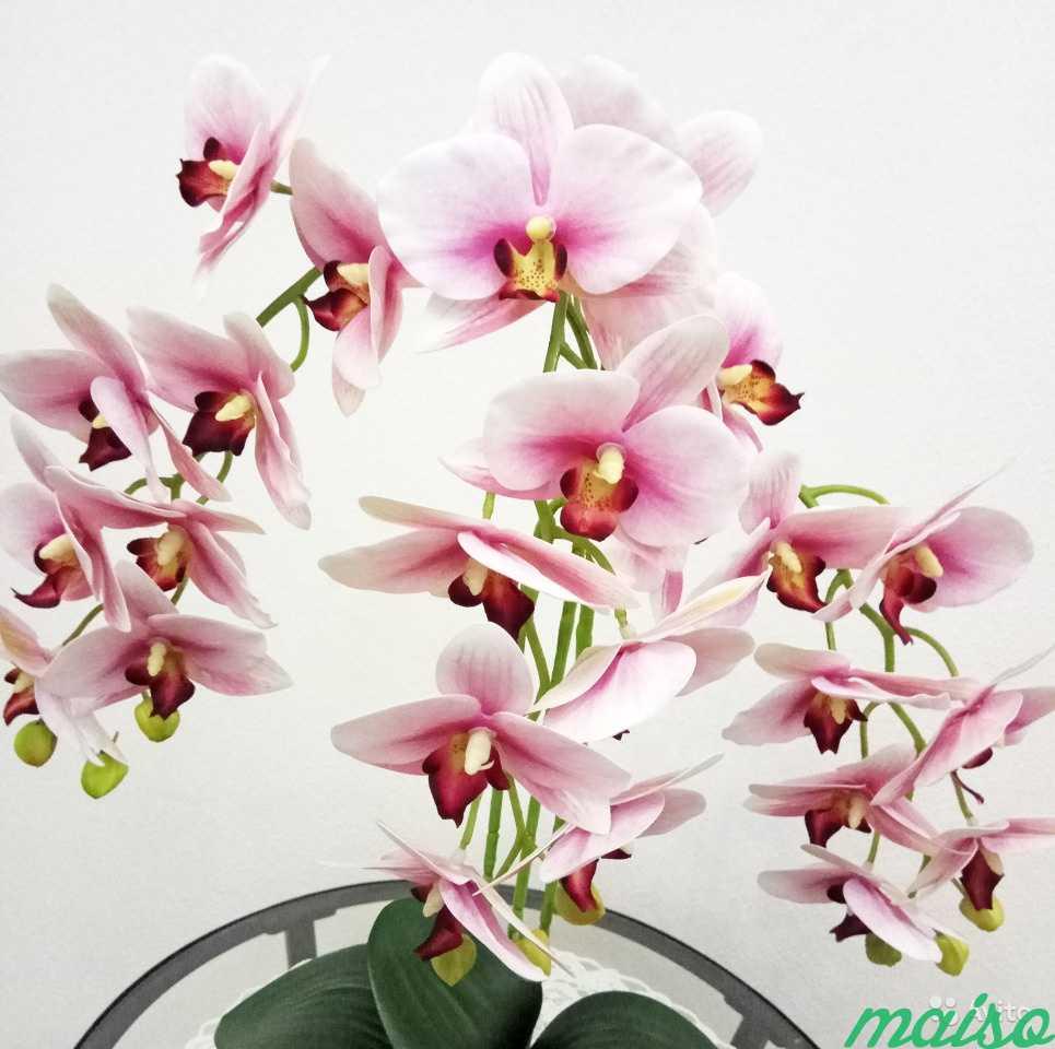 Искусственная орхидея в Москве. Фото 4