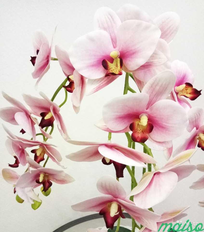 Искусственная орхидея в Москве. Фото 2