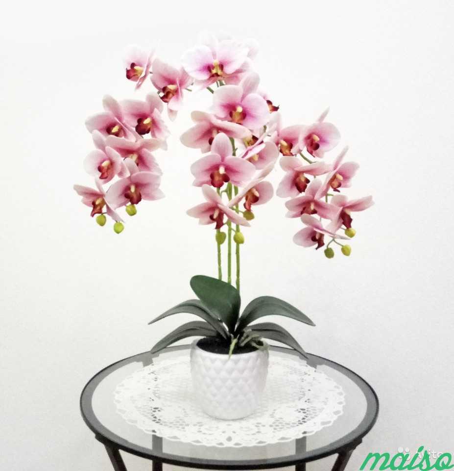 Искусственная орхидея в Москве. Фото 1