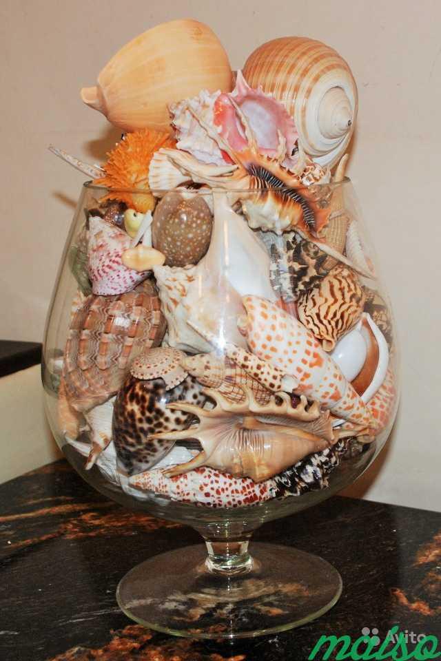 Коллекция декоративных ракушек в Москве. Фото 2