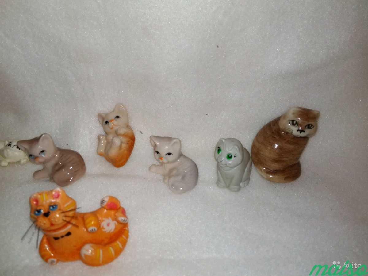 Кошки коллекционирование в Москве. Фото 2