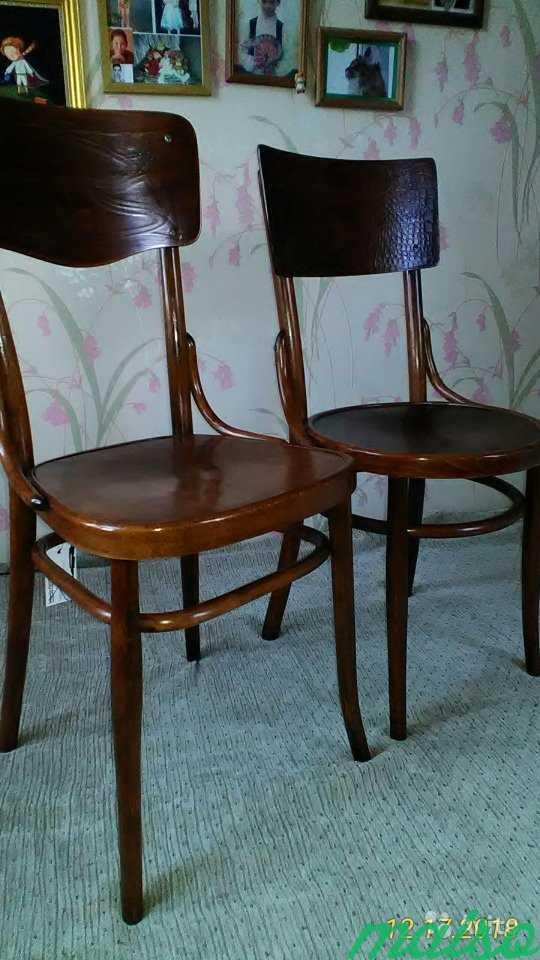 Восстановленные венские стулья в Москве. Фото 6