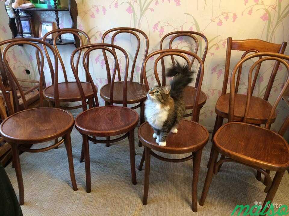 Восстановленные венские стулья в Москве. Фото 2
