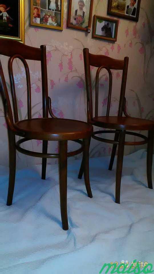 Восстановленные венские стулья в Москве. Фото 7