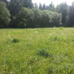 Продам участок 6 сот. , земли сельхозназначения (СНТ, ДНП) , 9 км до города