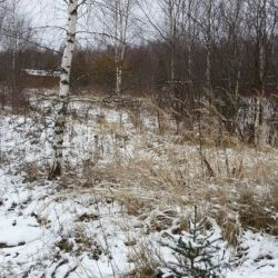 Продам участок 30 сот. , земли сельхозназначения (СНТ, ДНП) , Щёлковское шоссе , 140 км до города