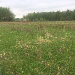 Продам участок 6 сот. , земли сельхозназначения (СНТ, ДНП) , Варшавское шоссе , 25 км до города