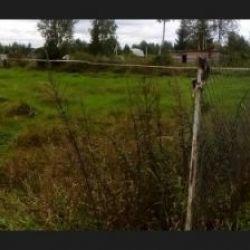 Продам участок 15 сот. , земли сельхозназначения (СНТ, ДНП) , Ленинградское шоссе , 71 км до города