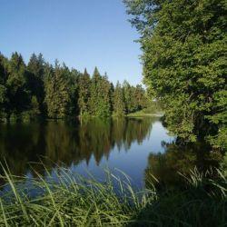 Продам участок 20 сот. , земли сельхозназначения (СНТ, ДНП) , Новорижское шоссе , 70 км до города
