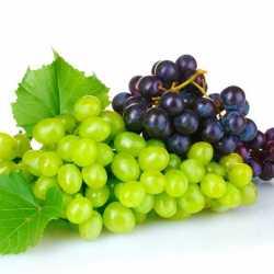 Натуральный концентрированный виноградный сок