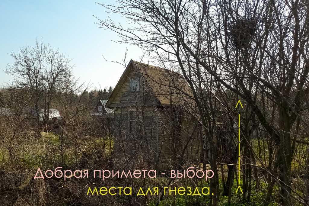 Земельный участок 5 соток под строительство дачи. в Кимрах. Фото 7