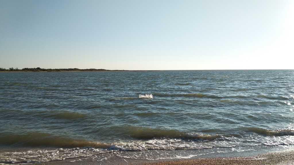 отдых у моря в Армавиру. Фото 4