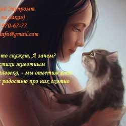 Стихи о природе, стихи о животных, стихи о временах года