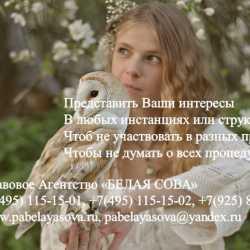 Представительские услуги в Москве и области.