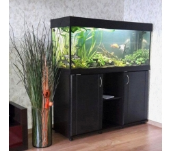 ZelAqua магазин аквариумов и террариумов в Москве в Москве. Фото 5