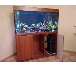 ZelAqua магазин аквариумов и террариумов в Москве в Москве. Фото 6